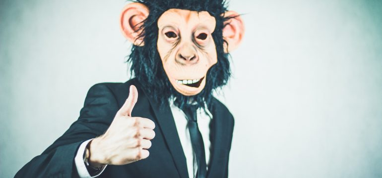monkey27106581920-1